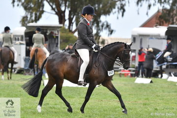 Paula Heffernan is pictured aboard her, 'Lynlea Print Design' during the Large Show Hunter Pony Championship.