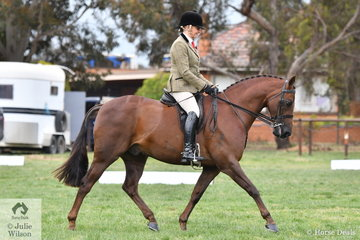 Di McDonald rode her well performed, 'Dunelm Icon' to claim the 2019 SHCV Southern Stars Large Show Hunter Galloway Runner Up award.