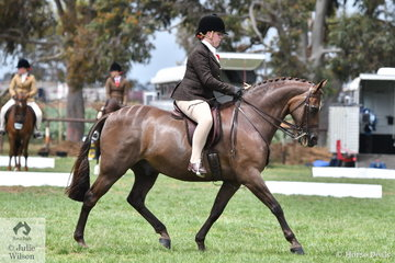 Claudia McCormick rode Sarah McCormick's very well performed, 'Salisbury Masterpiece' to claim the 2019 SHCV Southern Stars Large Show Hunter Championship.