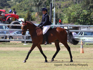 Karen Jackson working out to win the Thoroughbred off the track class