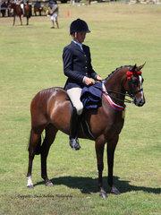 Champion Pony Hack ridden by Rhys Stanley