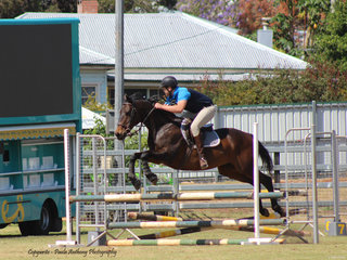 Cliff Davies in the show jumping