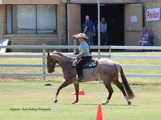 Caroline Bianchetti working out in the quarter horse under saddle