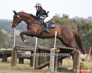 """""""Jaybee Artiste"""" ridden by Sophia Landy placed 5th in the CCN1*-SB with a final score of 39.8"""