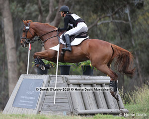 """My Kind of Guy"" ridden by Liana Wood in the CCN2*-SB"