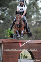 """David Middleton placed 6th in the CCN3*-S riding """"WEC In The Swing"""" with a final score of 37.1"""