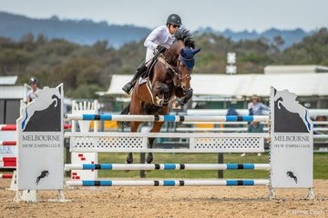 Phil Lever and Calvino competing on Day 1. Phil had a full calendar with team of horses to ride in most events. No doubt he is looking forward to the  upcoming Australian Showjumping Championships.