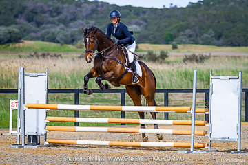 Nina Griffiths competing on an Off The Track gelding called Excusemwah in the Open 100cm class at Boneo Park for the  2019 Total Animal Supplies Boneo Cup