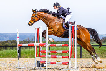 Amber Balazs-Ashman competed in the 104cm class on a Off The Track  horse called Bellrego
