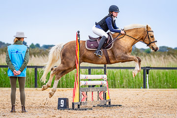 12 years & under 80cm Championship Congratulations to Amelia who rode like a champion on Pride of Gold during the 2019 Total Animal Supplies Boneo Cup