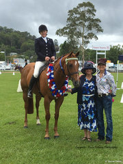 Tracey Stinson and Power to Succeed (Roy) winning Off The Track at Murwillumbah Show with sponsor Helen Gorton and Judge Mieke Bigg