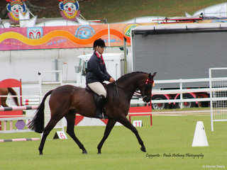 Farleigh Anastasia owned by Kim Johnson and ridden by Kirsty Harper Purcell reserve Champion Galloway on friday