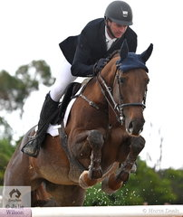 Successful rider and coach, Brooke Dobbin is pictured aboard Wendy Keddell's, 'Miranda MVNZ' during the Interpath Mini Prix Final.