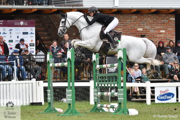 Katie Laurie is pictured aboard the beautiful, stallion, 'Casebrook Lomond' by Lansing (by Landgraf) out of a Calido 1 mare on their way to fourth place in the 2019 Pride's EasiFeed Australian Senior Showjumping Championships. They were the only combination of the 18 to start in the Final to post a first round clear. This final class of the Championships acted as a Tokyo Olympic qualifier and 12 of the starters posted a round with eight penalties or better, thereby earning and MES and are eligible for Olympic selection.