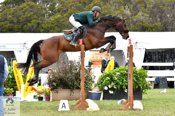 Chris Chugg is progressing according to plan with his imported eight year old 'PSS Levilensky' (Levisonn Holst/ out of a Cornet Obolensky mare) that took sixth place in the 2019 Pride's EasiFeed Australian Senior Showjumping Championships. The horse already has his Olympic qualification and is eligible to be chosen.