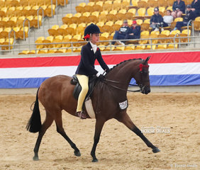 """""""Braeburn Park Spring Dance"""" was The MACARTHURPARC RIDING PONIES Champion Small Pony, ridden by Annabelle Richardson."""