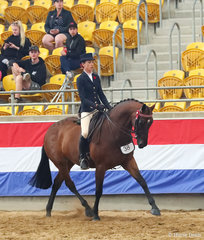 """Paige Richards rode Eileen Clarke's """"Thamesbury Contendress"""" to win The BUDDY EQUESTRIAN Small Hack Championship."""