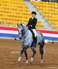 Aolani Ware placed Top 10 in The JUST NEIGH Rider 17 & under 21 years event.