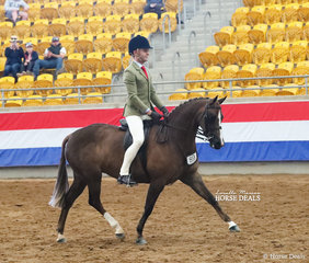 """Runner Up in The KERRIBEE PARK SHOW HORSES Large Show Hunter Pony event """"Langtree Secret Affair"""" and Michael Gates."""