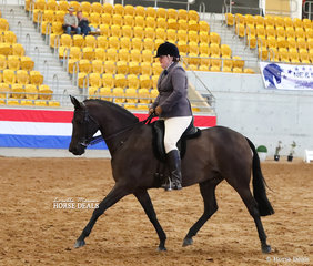 """Sonja Clarke rode """"Mcarthurparc Espionage"""" to a Top 10 placting in The DUBBO & DISTRICT SHOW HORSE ASSOCIATION Large Show Hunter Galloway event."""