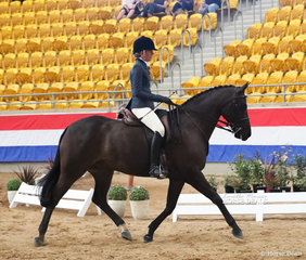 """Top Ten placegetter in The M.R. BREECHES Small Show Hunter event """"Washington DC"""", exhibited by Ella Devantier."""
