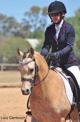 Amaranda Bradley ridden by Alison Dowton in the Preliminary 1A.