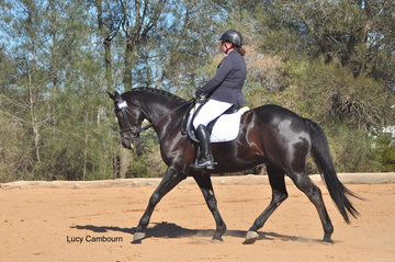 Jane Hyslop and Welts Brego competing in the Medium 4A test.