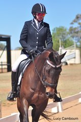 Midge and rider Susan Wilson competing in the Preparatory E.