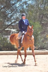 Bryony Pimm and her horse Evade and Counter competing in the Preliminary 1A.