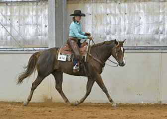 Carol Elliott riding Zip Some Moore in the Junior Horse Ranch Riding
