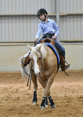 Gay Bar War Hero  ridden by Katia Sonsini in the All Age Youth Ranch Riding