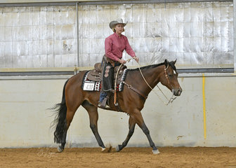 Helen Nixon riding Triandibo Infullplay in the Select Amatuer Ranch Riding