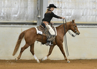 Jessica Young riding  Cattalenas Little Rooster, competing in the Junior Horse Ranch Riding