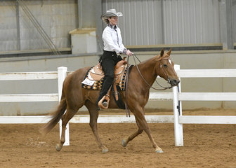 Isatru QT ridden by Carly Turnbull in the Amateur Ranch Riding