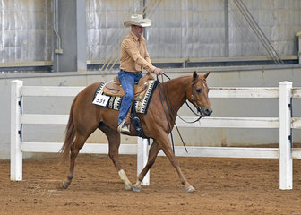 Sam Skilling riding A Lil Midnight Chardonnay in the Senior Horse Ranch Riding