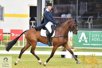 Andrew Cooper is pictured aboard Beth Collins', 'Riverbreeze' by Riverside (imp) during the dressage phase of the RM Williams CCI4*-S. They hold seventh place heading in to the cross country tomorrow.