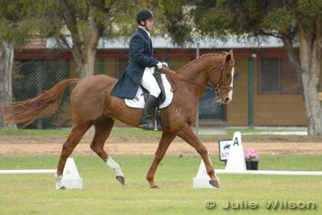 James Lang with his 'Road Ranger' during the dressage section of the Cape Jaffa Anchorage CIC*** competition.