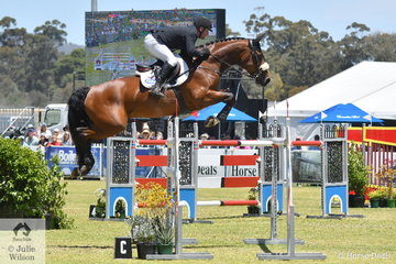 Billy Raymont opted to ride the consistent and talented 'Anton' in the Atco World Cup Qualifier at the Mitsubishi Australian International Event and it paid off. They just lowered one fence in the first round to claim second place.