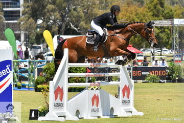 Chelsea McInnes from WA is pictured aboard her Vivant mare, 'Diamond B Vigo' on their way to tenth place in the Atco World Cup Qualifier.
