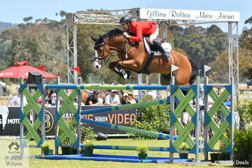 Russell Johnstone rode the McCann family's wonderful Dutch import, 'Daprice' to post the only double clear in the Atco World Cup Qualifier. They clearly like South Australia.