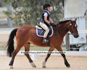 """Winners in the Level 5A, Taylor McMAster riding """"Wingana Jack Jones"""" proving you don't need to be an Adult to win at TTT Dressage"""