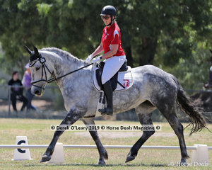 Penny Hymus rode North Edge Park Athena in the Level 3C representing Kangaroo Ground ARC, her team the KG Dancing Kangas