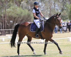 """Evelyn Crawford rode """"Whirrakee Masterclass"""" in the Level 3E representing Gisborne ARC"""
