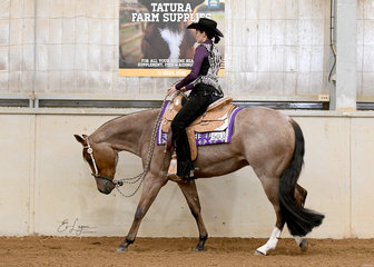 About Last Night, ridden by Patricia Cornfoot in the 3 Year Old Western Pleasure