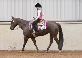 Annlee Cee Cee Top ridden by Braidy Ellis in the Youth 7-13 years Western Pleasure