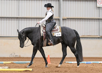 Back To Black, ridden by Madeline Kay in the Amateur Senior Horse Trail.