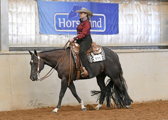 Dark Punk, ridden by Lynne Van Dyke in the  Select Amateur Western Pleasure