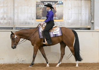 Cassandra Grainger showing CP Lazyn N Blayzn in the Select Amateur