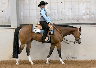 Dawn Holliday riding Sudden Blaze in the AmQHA All Age Western Pleasure.