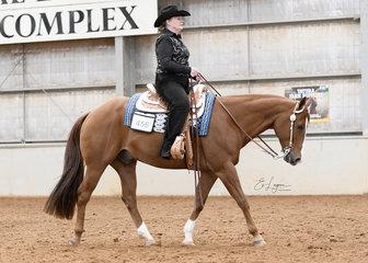 Fran Christian on Triandibo Incede in the Select Amateur Horsemanship